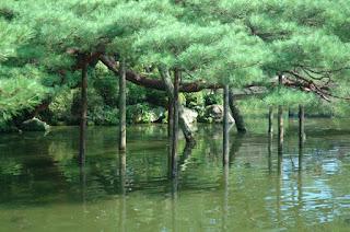 Foto Jardin Zen