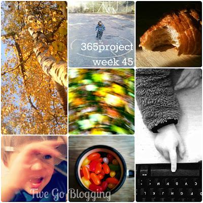 Five Go Blogging 365project week 45