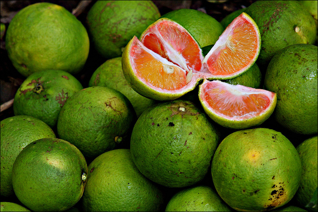 Fruits in Ghana: FRUITS IN GHANA AND ITS IMPORTANCE
