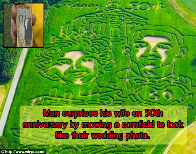 An a-maze-ing 50th anniversary gift: Man surprises his wife by mowing a cornfield maze to look just like their wedding photo