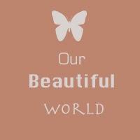 http://our--beautiful--world--365.blogspot.de/2014/05/week-45-mirroring.html