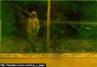 gambar hantu lembaga putih
