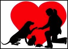 """""""No podemos exigir que ames a los animales,pero si que los respetes"""""""
