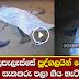 Two persons shot dead in Angunakolapelessa