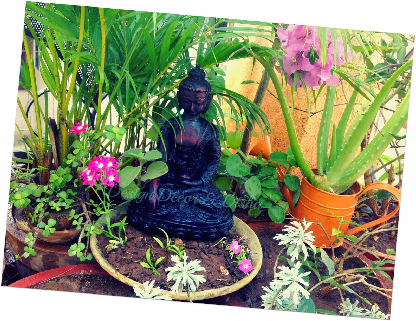 design decor & disha: quick way to beautify a garden!!