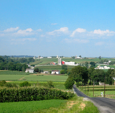 Amish Farmland