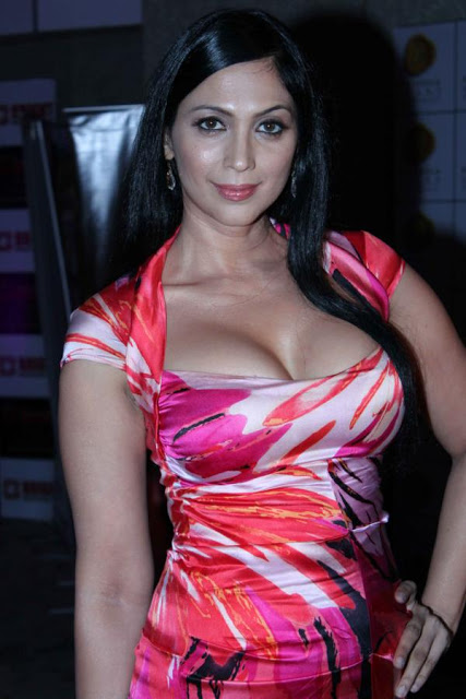 Kalpana Pandit Hot Photoshoot In Bright Awards 2012