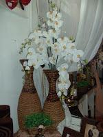 Vasos de seagrass
