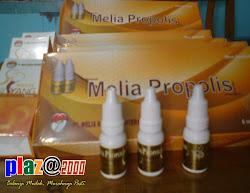 PROPOLIS MELIA  (MSS)