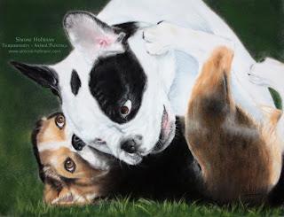 Tierportrait Hundeportrait nach Fotovorlage mit Pastellkreide malen lassen