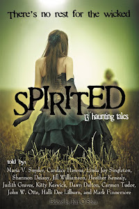 Buy Spirited today - and support literacy!
