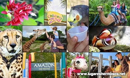 Las mejores playas y toda la diversión en Miami Florida