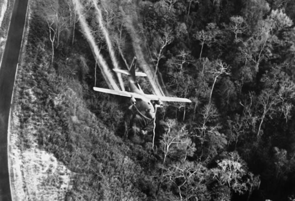 I'm writing a research paper on Agent Orange during the Vietnam War. What's a good thesis statement?