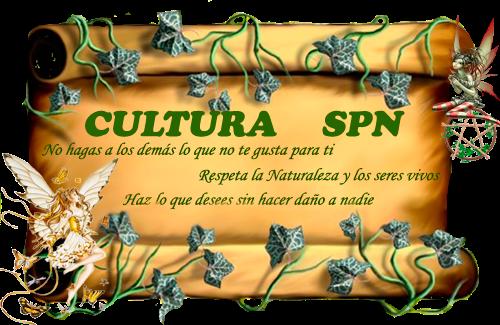 Cultura spn