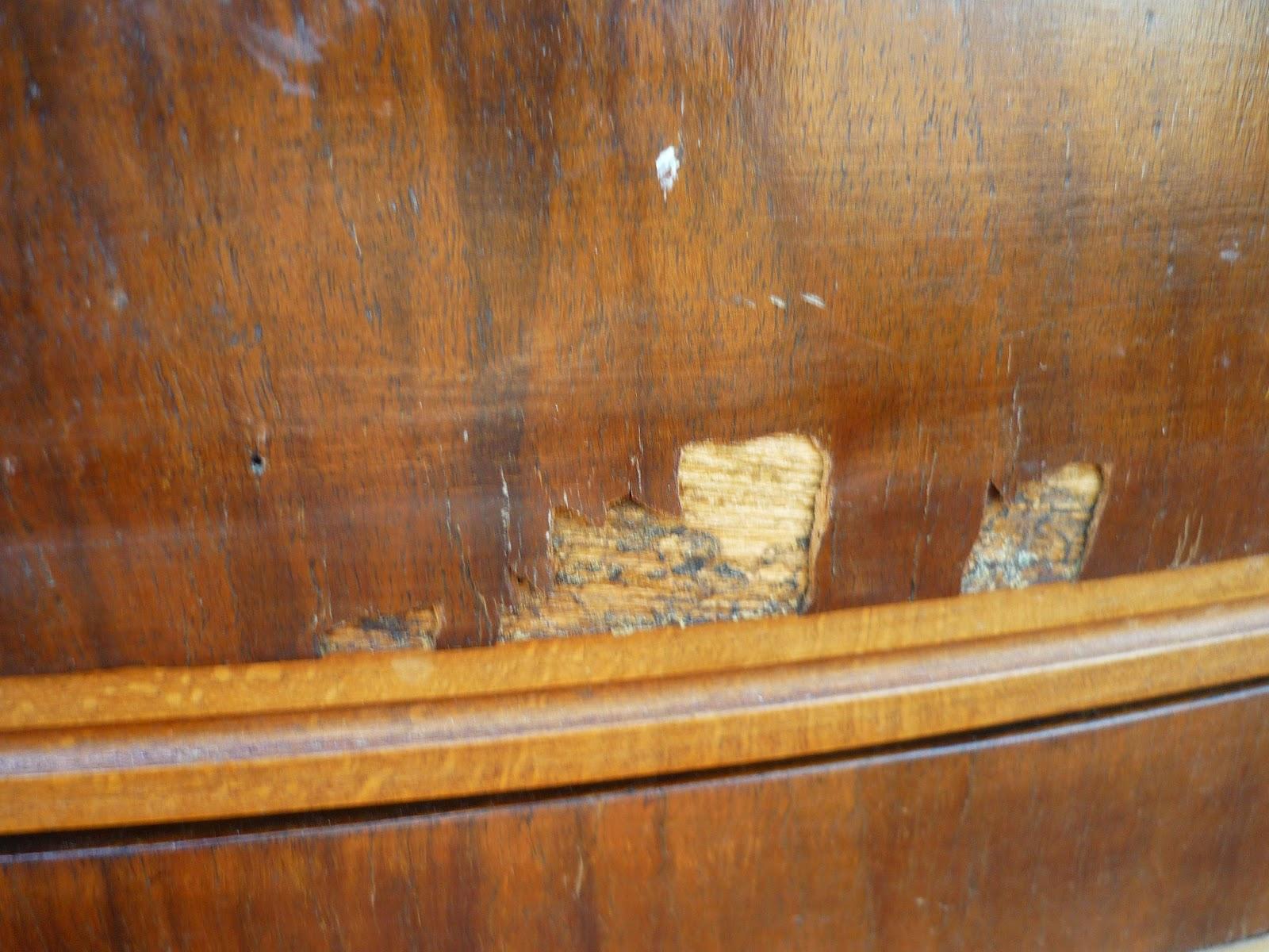 Restauracion y decoracion de madera retirar el - Contrachapado de madera ...