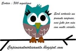 300 seguidores