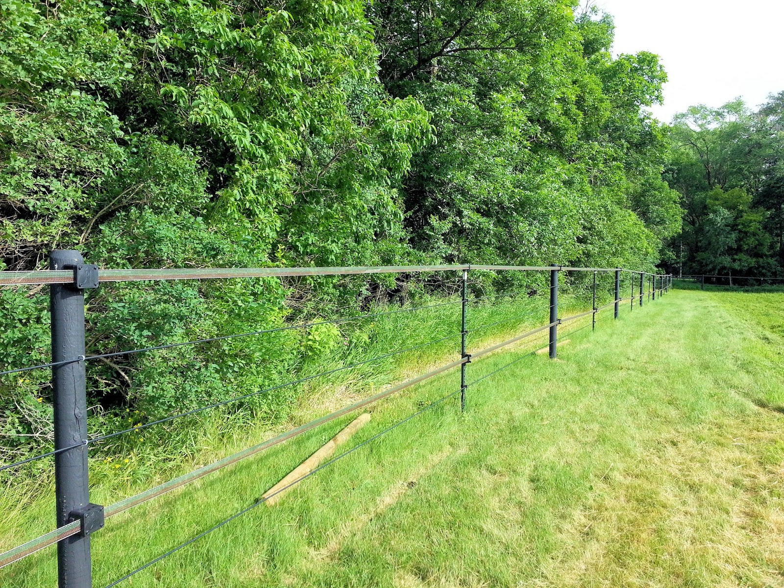 Kencove Coated Wire Fence: Part Two of What I Would Do Differently ...
