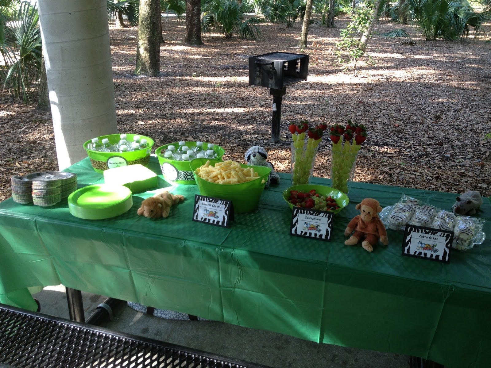 The Demoor Family Carson S Wild Kratts 5th Birthday Party