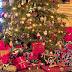 A história secreta da Árvore de Natal