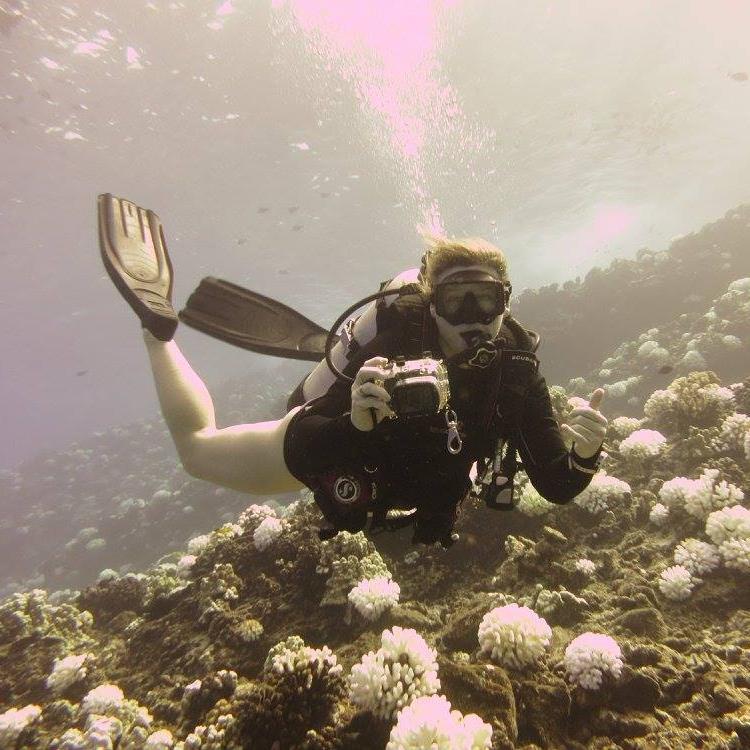 Avatar 2 Oceans: Maui Ocean Bloggers