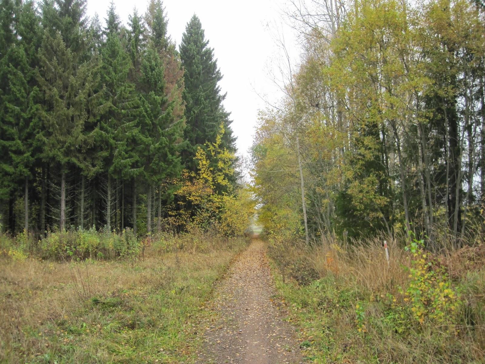 Kotteland & fridhemsparadiset: oktober 2014