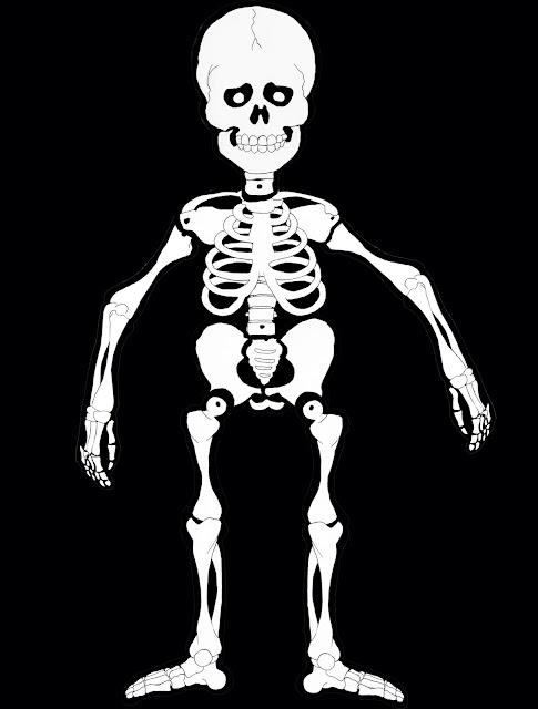 esqueleto, recortable, dibujo