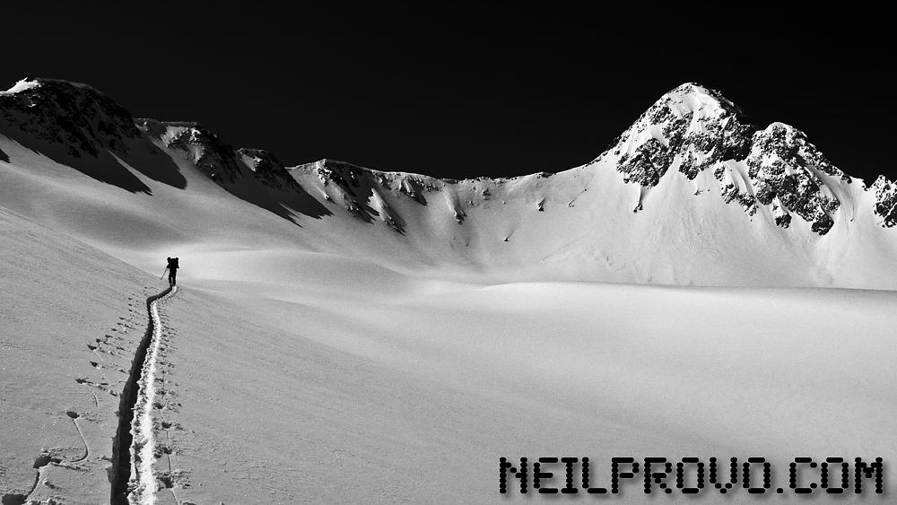 Neil Provo .com