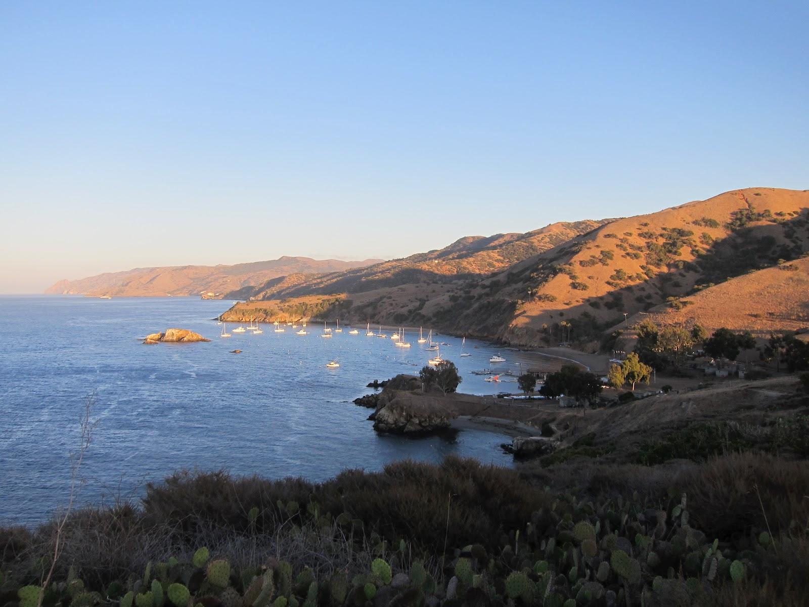 Nate 39 s nonsense summer camp retrospective for Catalina bay