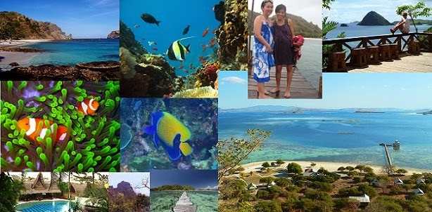 East Nusa Tenggara Liveaboard and Bali in 14 Days/13 Nights