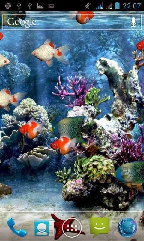 Download Wallpaper Lucu Bergerak Gratis Amazing Wallpaper Hd Library