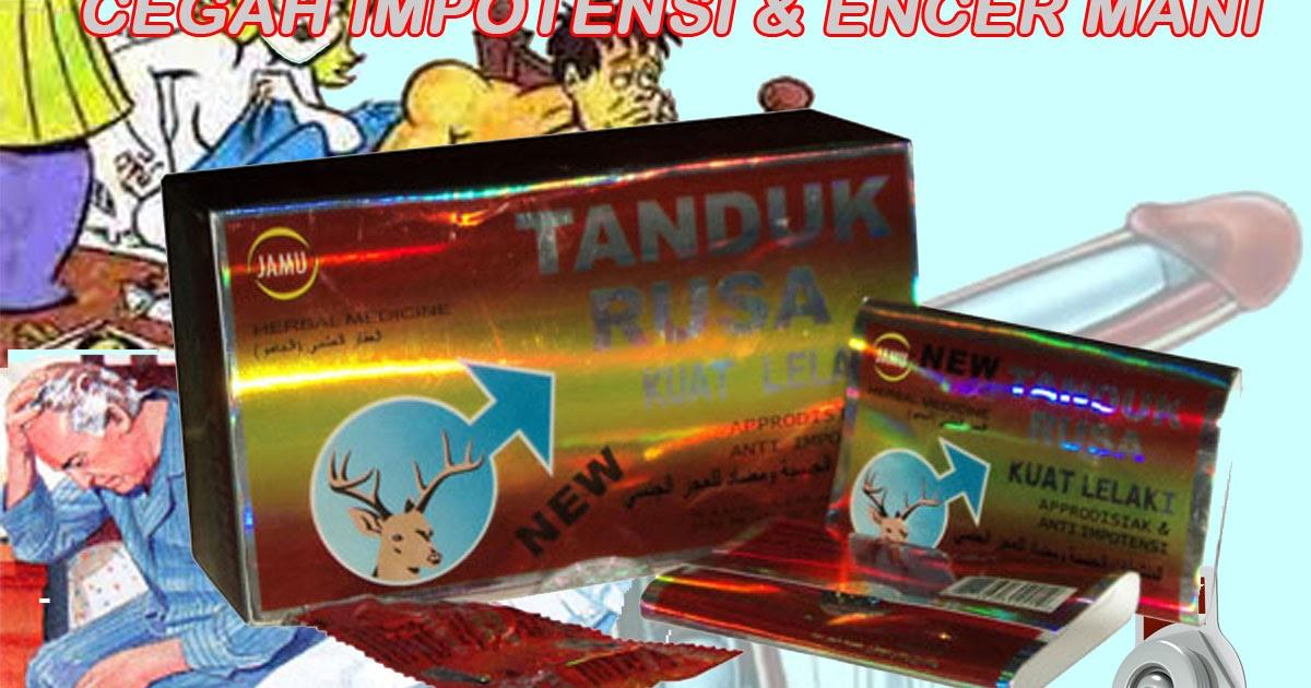 tanduk rusa kapsul toko herbal 07