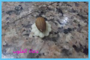 حلاوي مغربية باللوز للعيد 2013   3