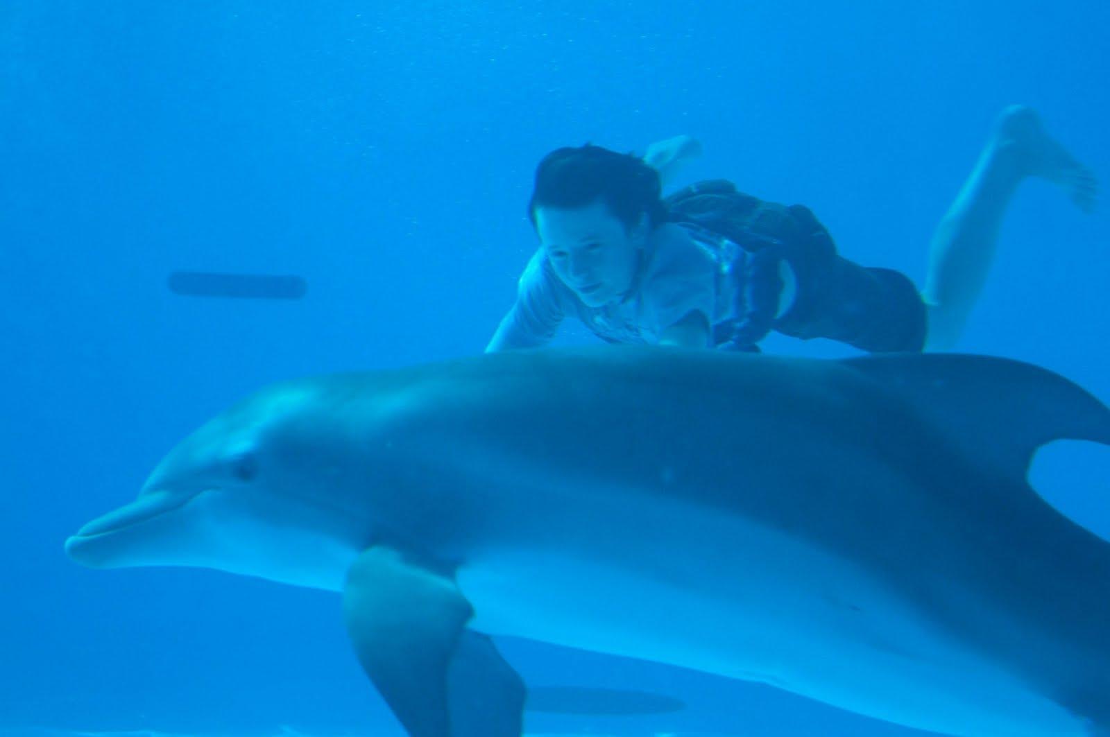 the boy on a dolphin Boy on a dolphin.