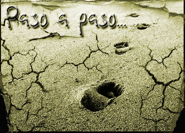 paso+a+paso.jpg