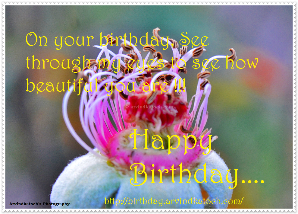 See through my eyes to see how beautiful you are Happy Birthday – Beautiful Happy Birthday Cards