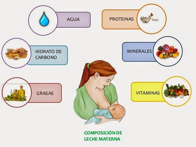 Cunta leche materna debe tomar un beb de tres meses