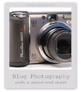 Blog photography with a point and shoot