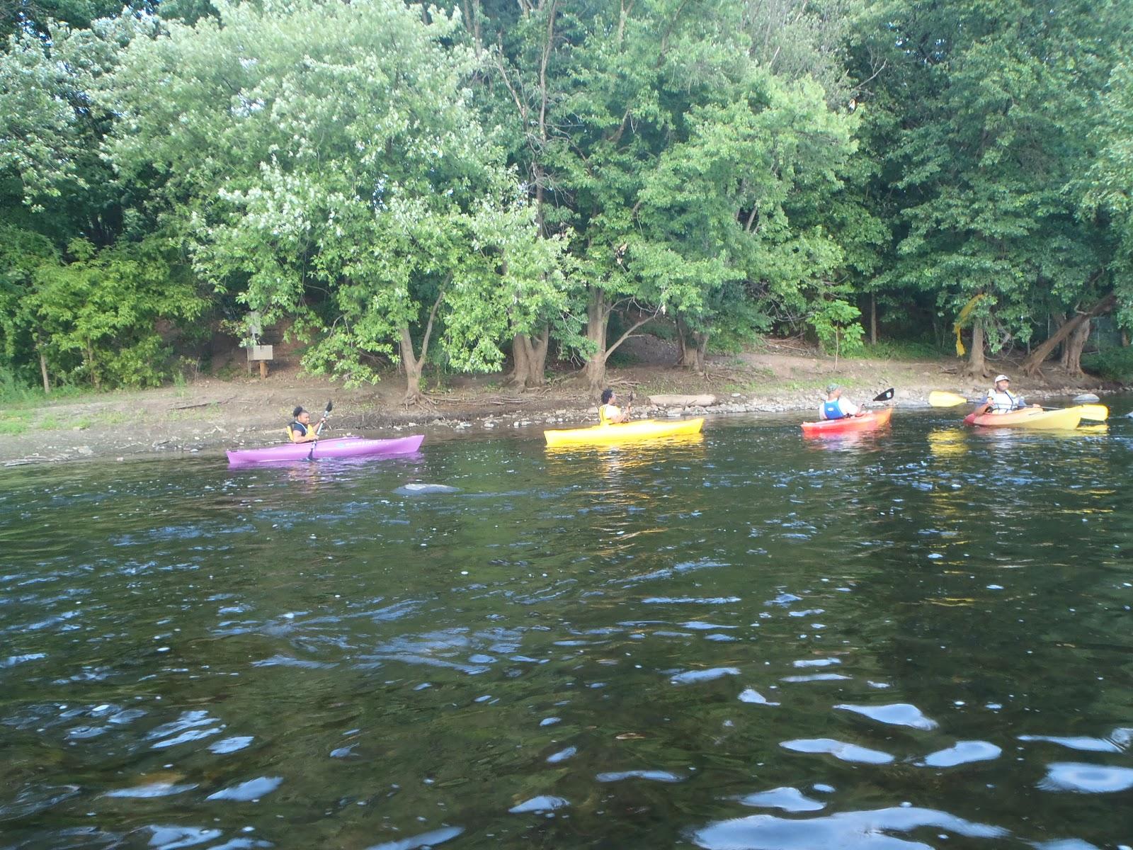 John 39 s kayak passaic river paddle for Passaic river fishing