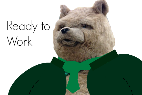 Ready to Work Internship Bear