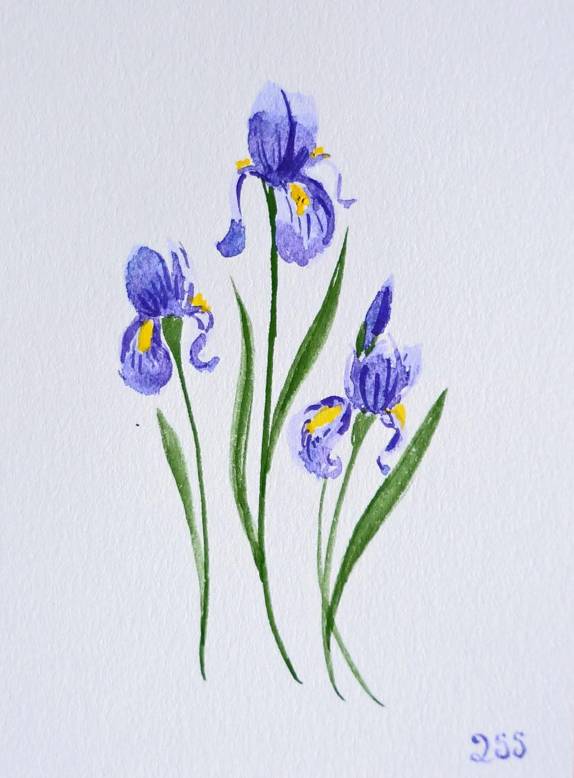 Artist illustrator irina sztukowski watercolor cards botanical painting izmirmasajfo