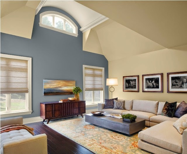Paint color ideas for living room accent wall for Idea for painting living room