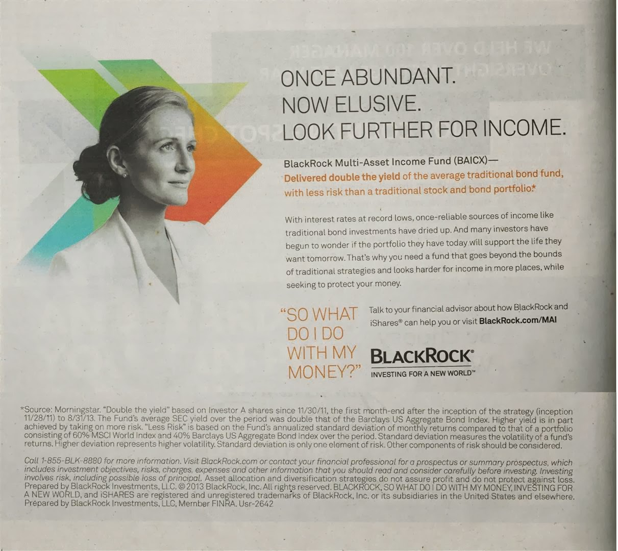 BlackRock Investment Ad