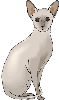 White Cute Cat Standing Free Animal Clipart