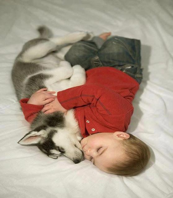 Un généreux bébé qui serre son chien pour dormir
