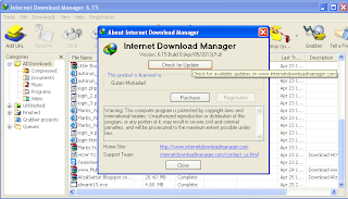 Internet Download Manager 6.15 final Build 11
