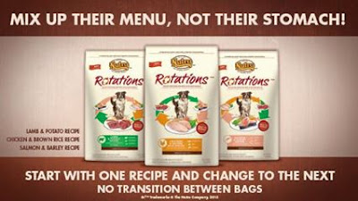 Rotation Food Logo