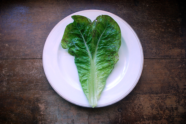 heart shaped lettuce leaf