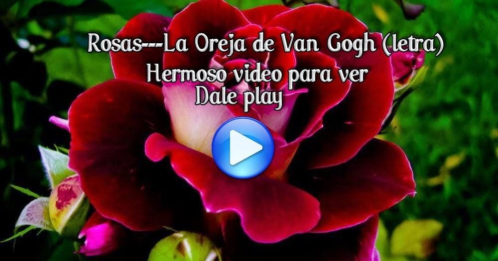 letra musica video oreja van gogh: