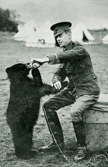 http://www.cbc.ca/news/canada/manitoba/winnie-the-pooh-saga-turns-100-years-old-today-1.2745104