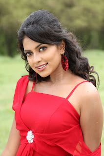 Amala Paul Wallpapers Free Download